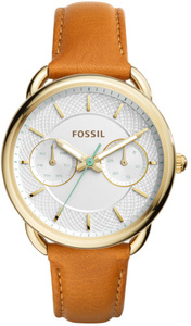 Fossil ES4006